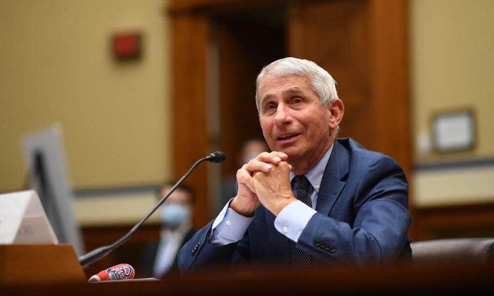 Fauci staffer to retire after report he trashed 'mask nazi' Fauci and coronavirus 'fraud' online